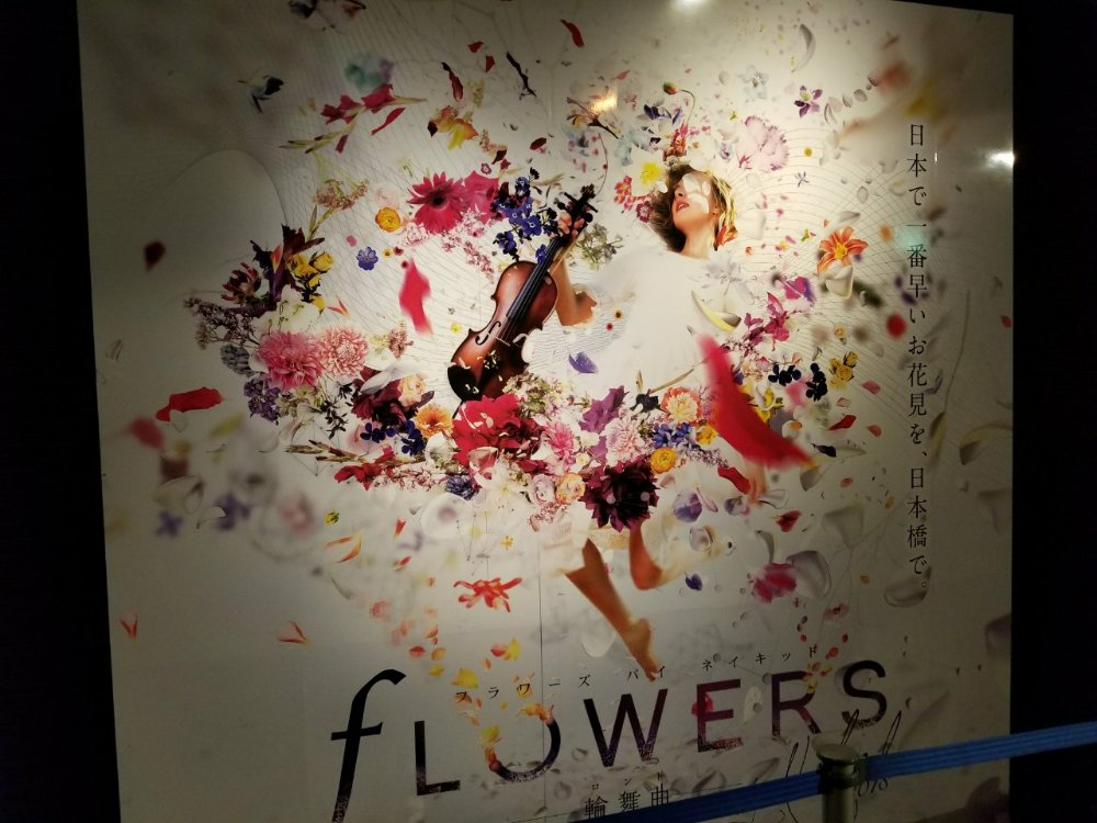 FLOWERS by NAKED 2018 輪舞曲 (フラワーズバイネイキッド2018ロンド)